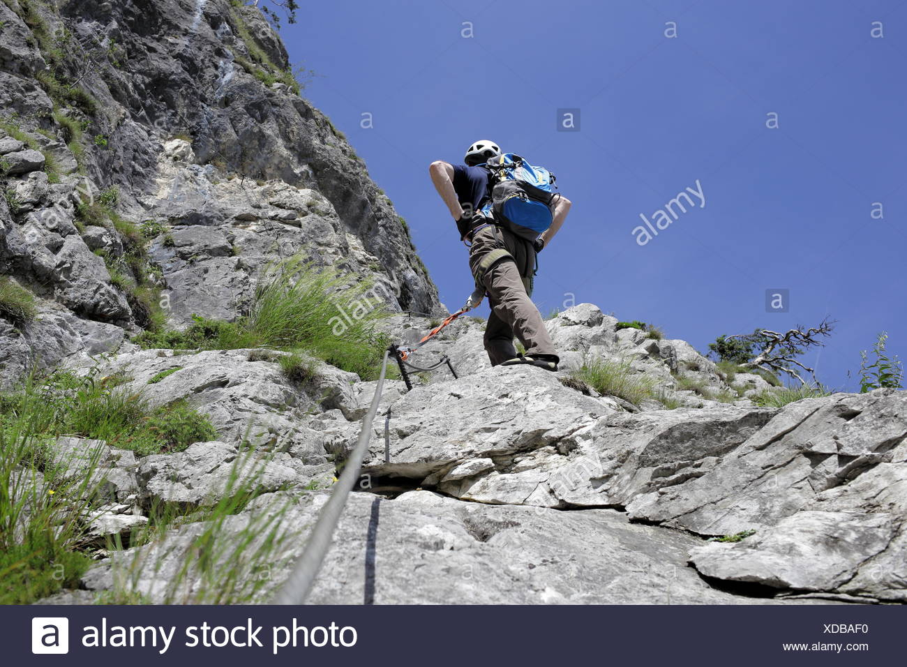 Sportler an der Kletterwand Stock Photo: 283606148 - Alamy