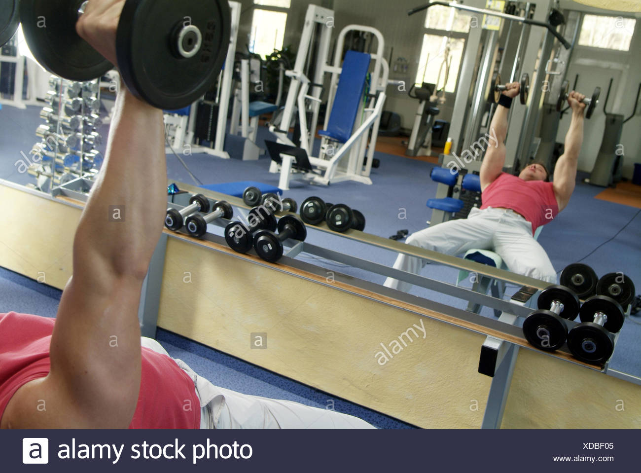 Young man does weight training in fitness center - Stock Image