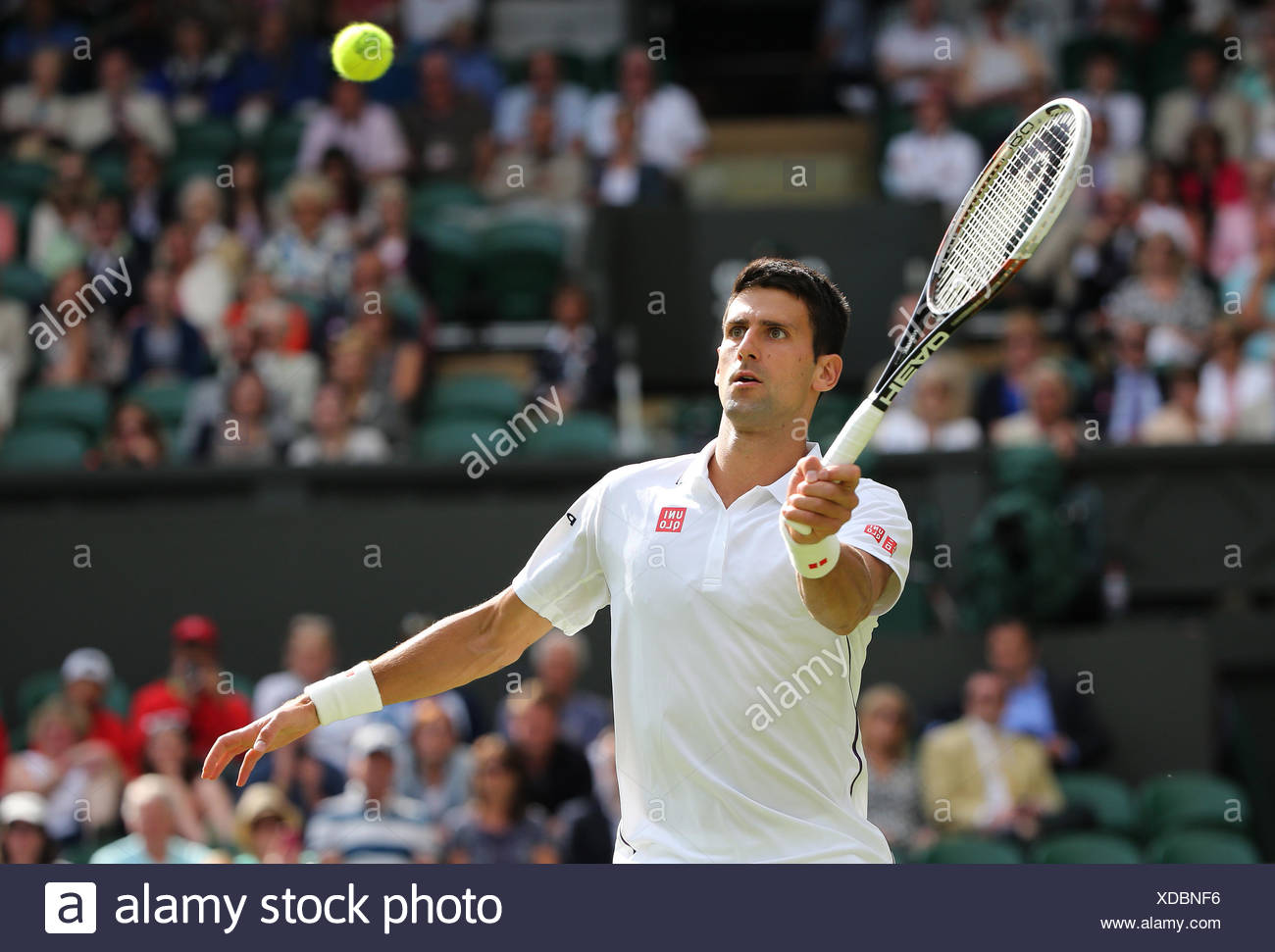 Novak Djokovic, SRB, Wimbledon Championships in 2014, ITF Grand Slam Tennis Tournament, AELTC, All England Lawn Tennis and - Stock Image