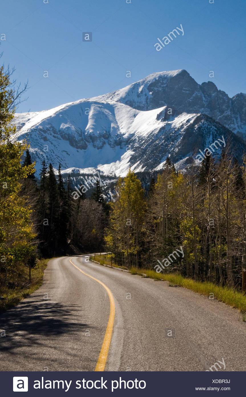 Wheeler Peak Scenic Drive winds through Great Basin National Park towards Wheeler Peak, NV. - Stock Image