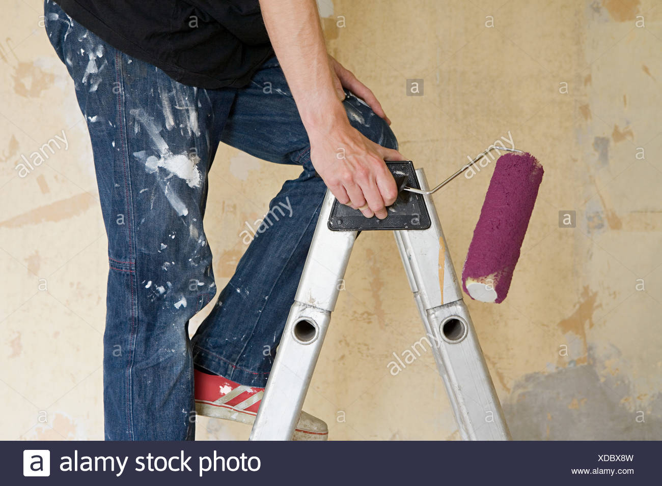 Man on stepladder with paint roller - Stock Image