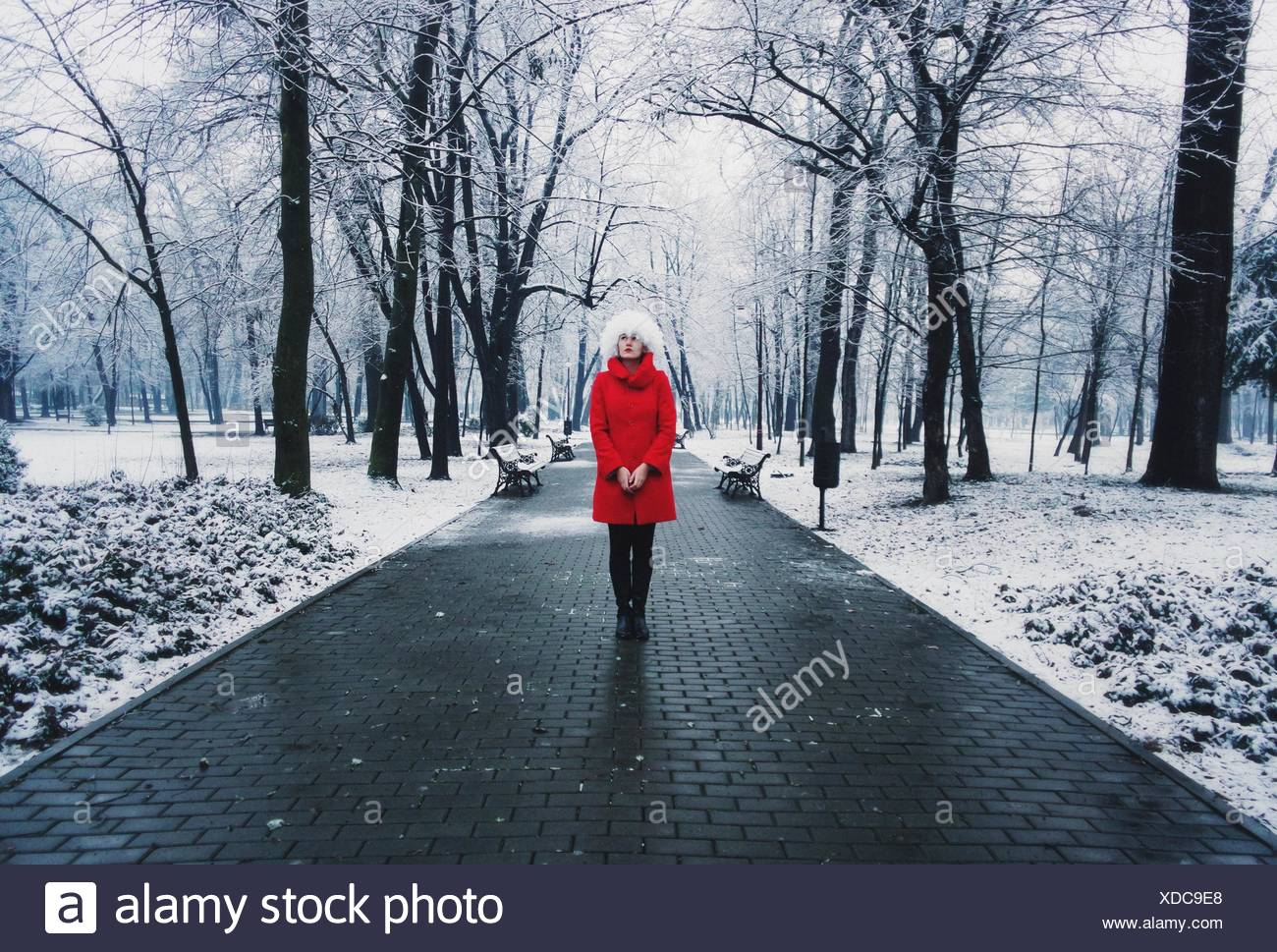 Portrait of young woman wearing red coat in snow covered park - Stock Image