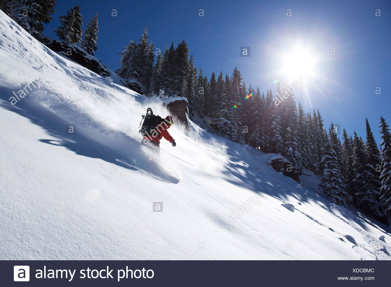 A athletic snowboarder rips fresh powder turns on a sunny day in Colorado. - Stock Image