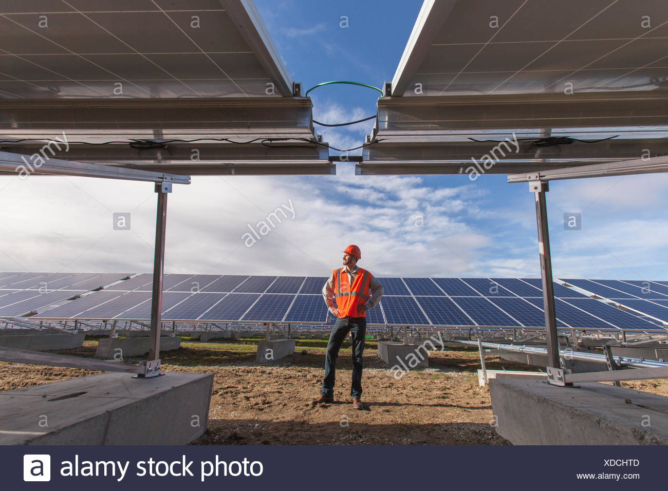 Power engineer standing in front of solar photovoltaic array - Stock Image