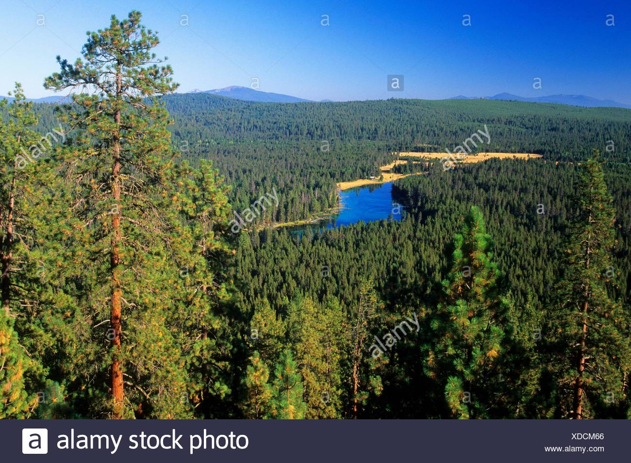 Spring Creek from Oux Kanee Viewpoint, Winema National Forest, Oregon. - Stock Image