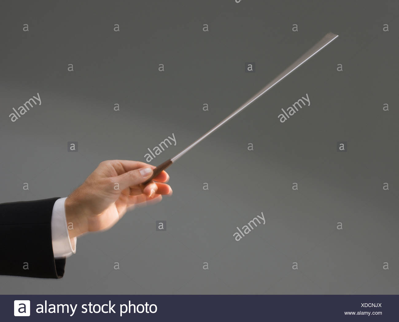 Male conductor's hand holding baton - Stock Image