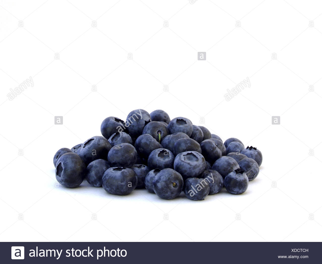 Heidelbeeren / blueberries - Stock Image