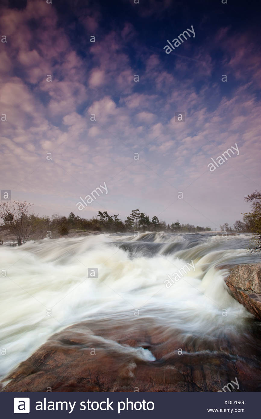 In 2009 wet spring raised water levels Otonabee - Stock Image
