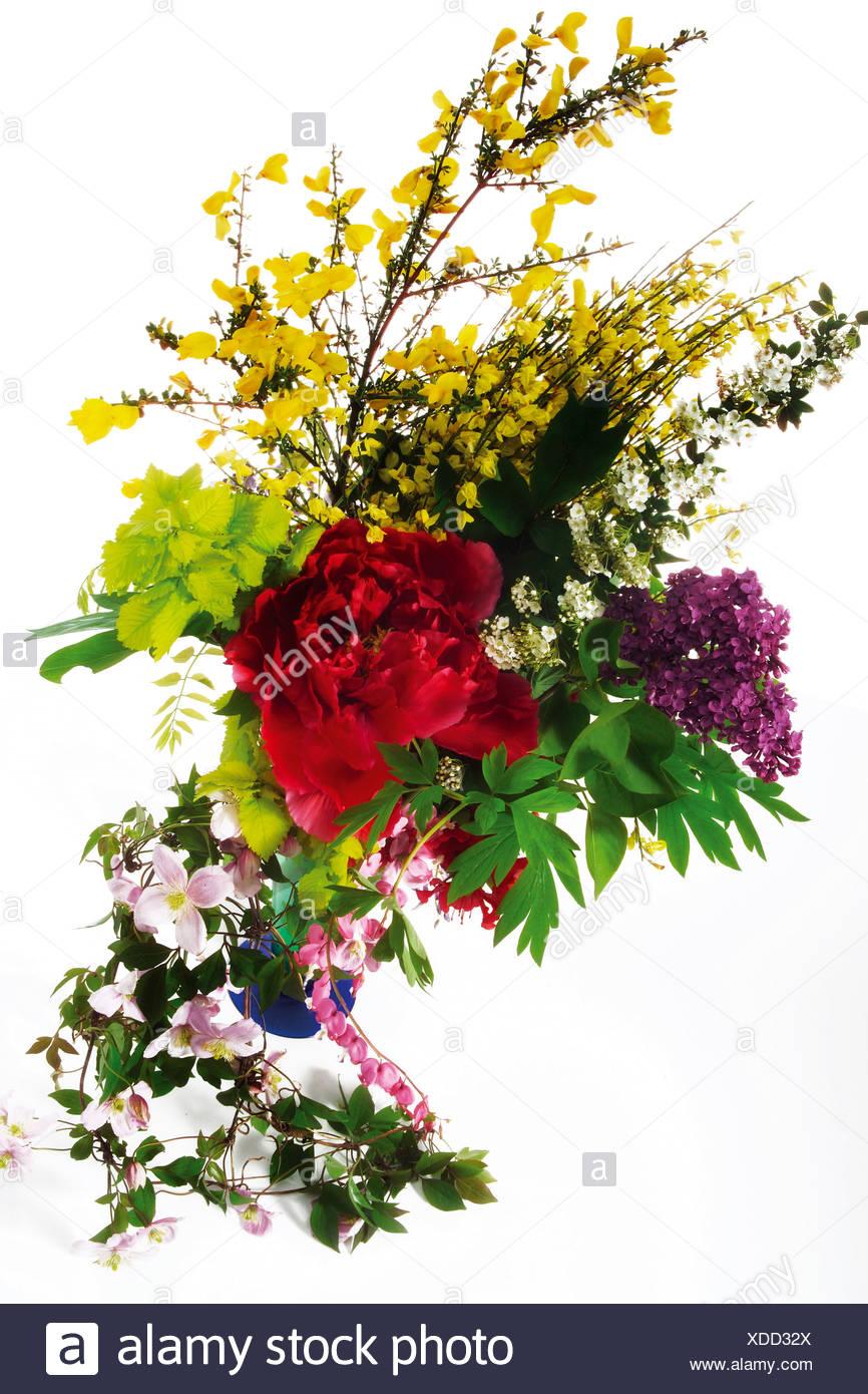 Multi color flower bouquets stock photos multi color flower sring flowers bouquet close up stock image izmirmasajfo