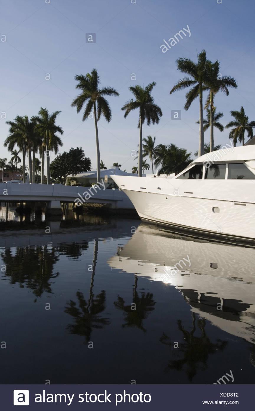 USA, Florida, Fort Lauderdale, Kanal, Yacht,  Detail,   Nordamerika, Reiseziel, Wasser, Hafen, Palmen, Spiegelung, Wasseroberfläche, Boot, Motoryacht, Yachthafen, Luxus, außen, menschenleer, - Stock Image