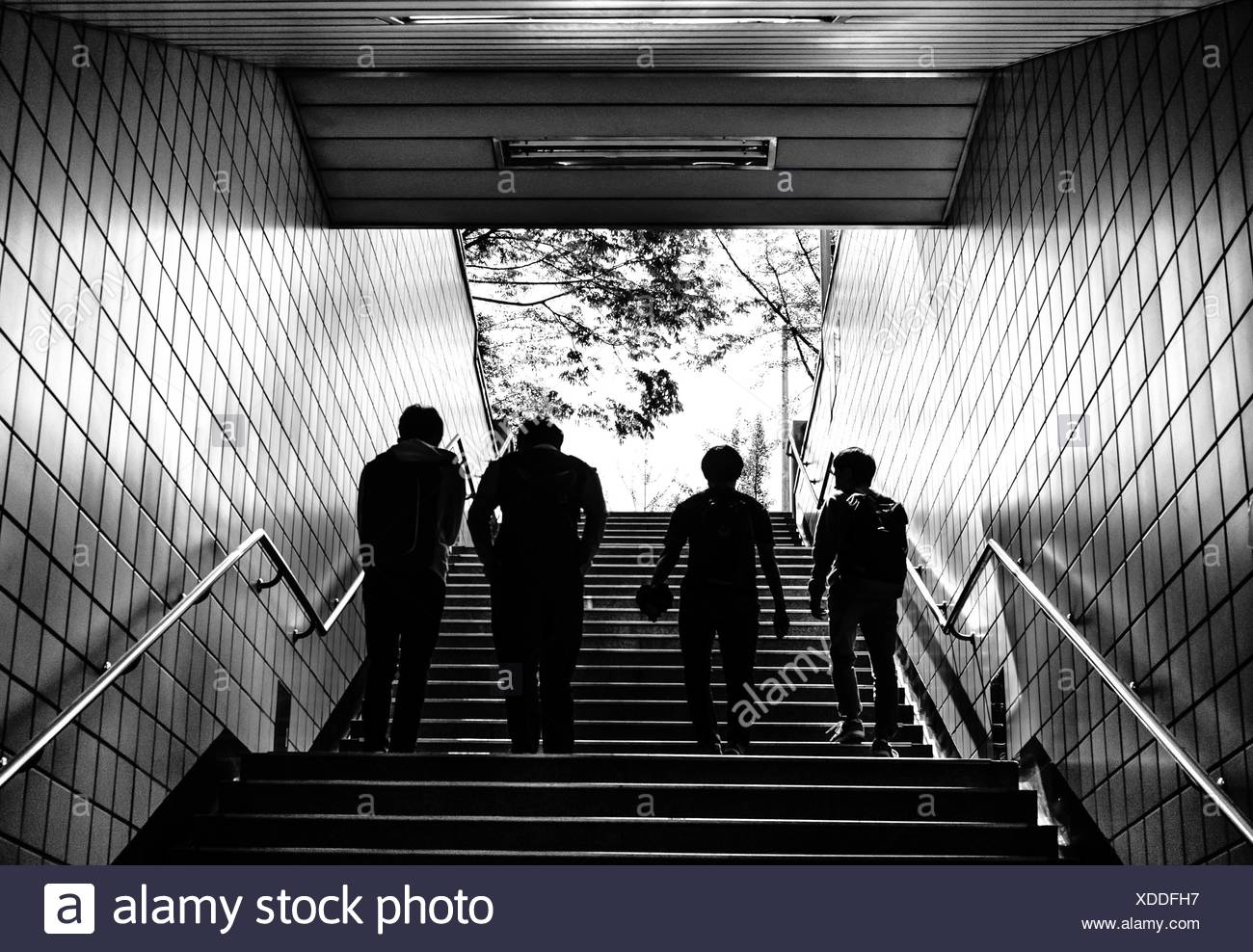 Rear View Of Silhouette People Walking On Staircase In Subway Stock Photo
