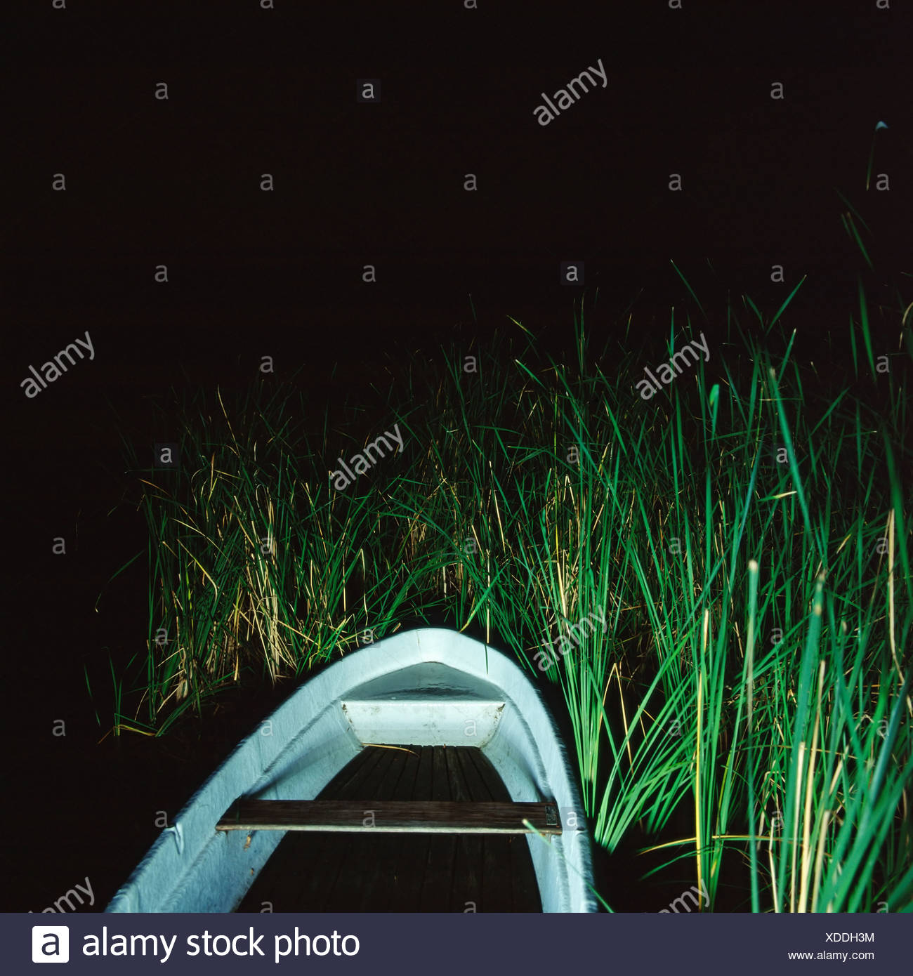Rowboat in river bank - Stock Image