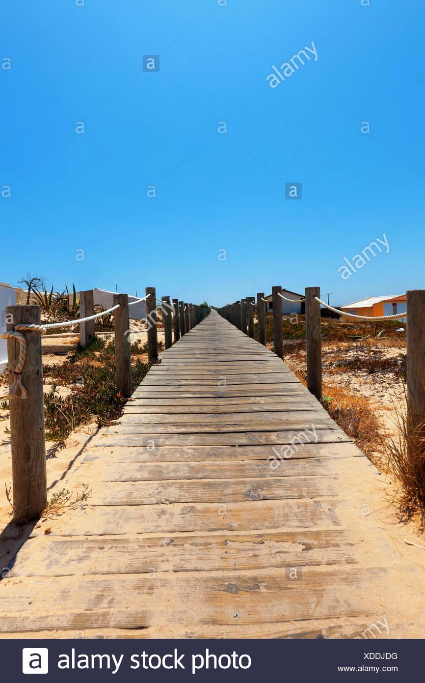 Boardwalk protecting a fragile dune ecosystem - Stock Image