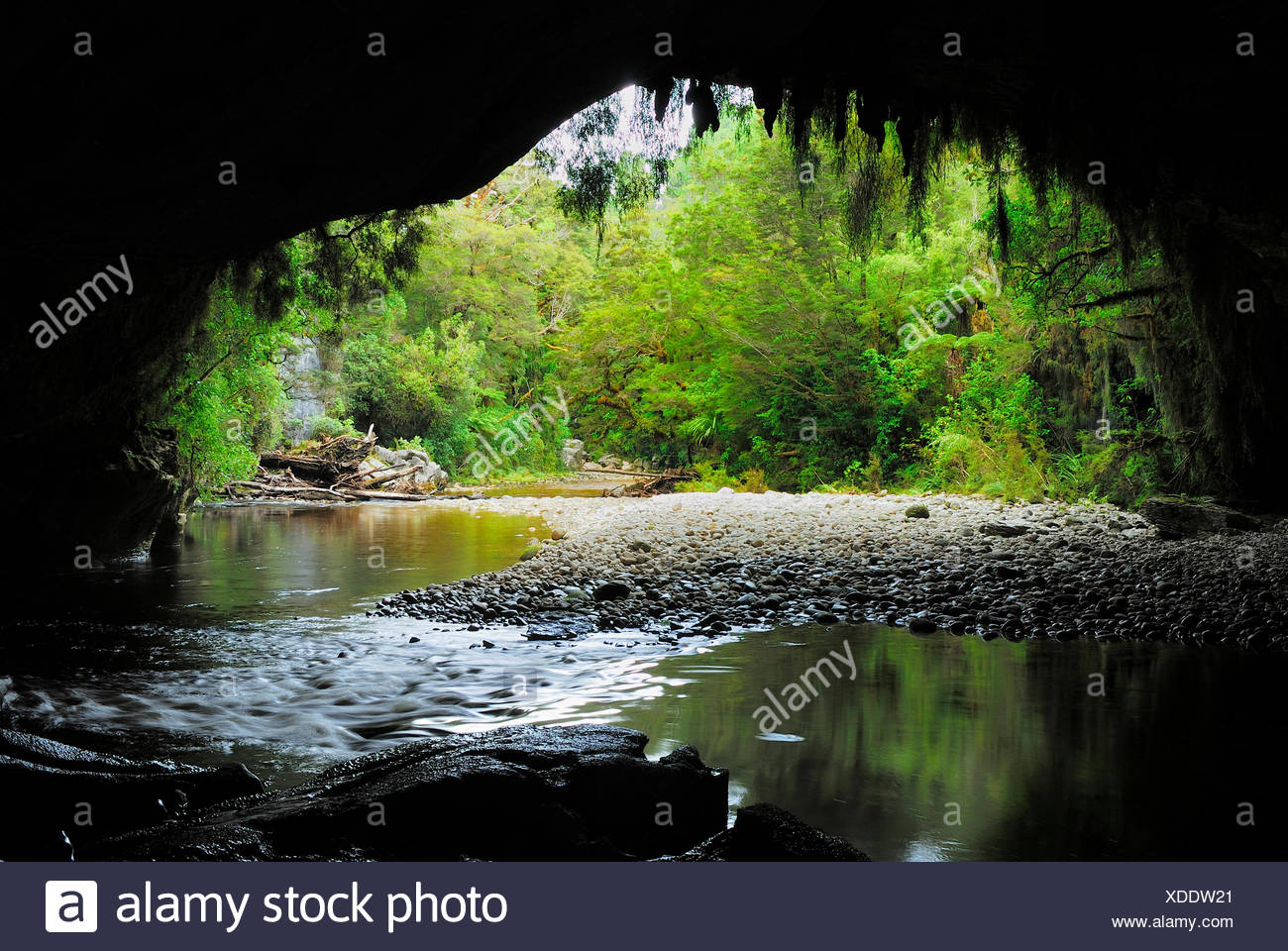 Moria Gate Arch and Oparara River, New Zealand, Southern Island, Kahurangi National Park, Oparara Basin Stock Photo