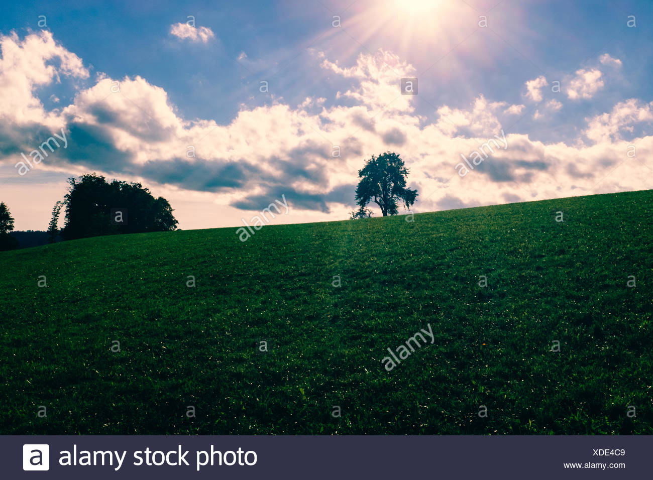 Scenic View Of Landscape Against Sky On Sunny Day Stock Photo