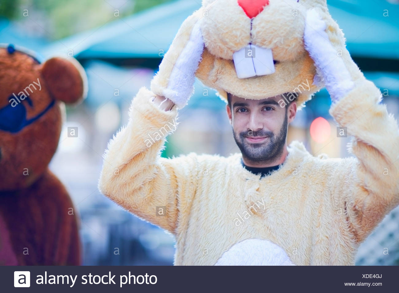 Man in a bunny costume - Stock Image