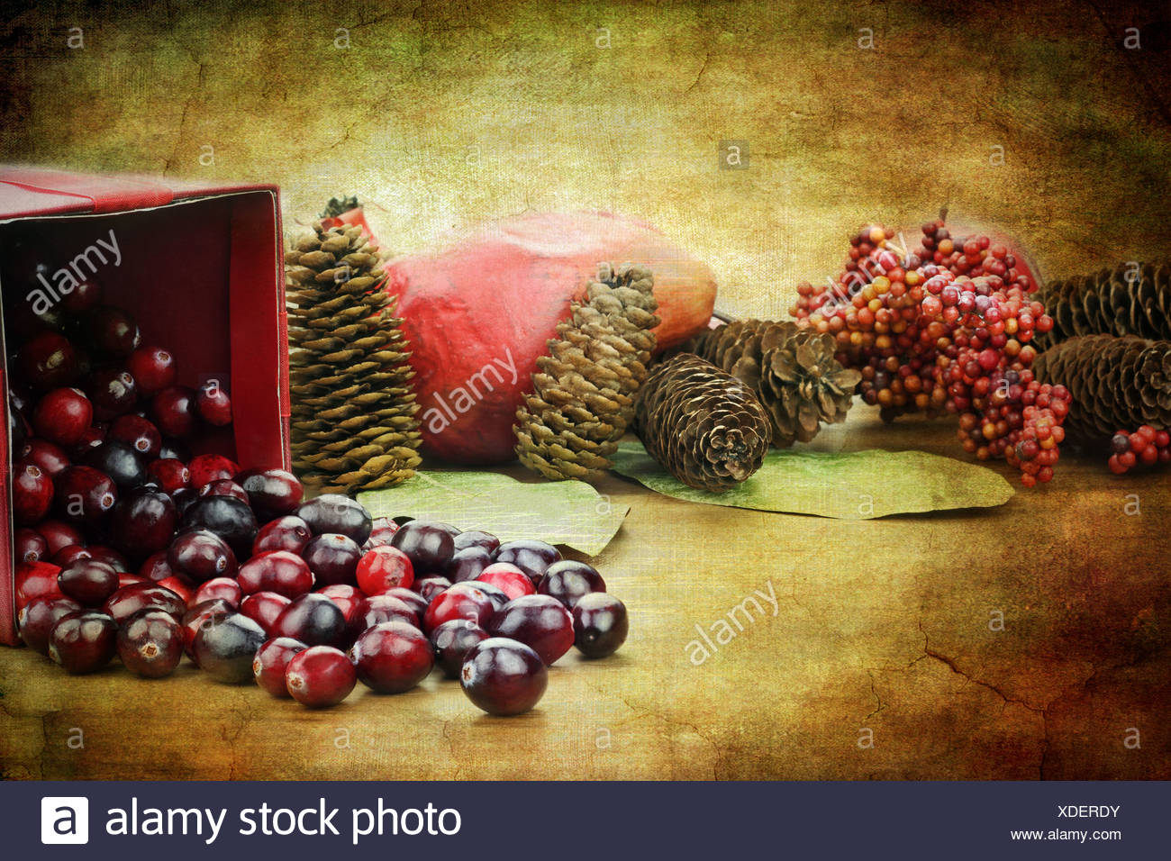 Photo based illustration of a red Christmas box spilling out fresh cranberries with pine cones an pomegranates in the background - Stock Image
