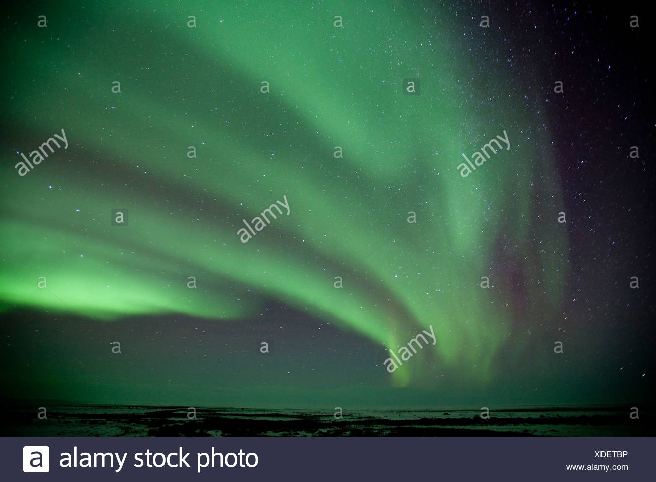 Northern Lights and starry skies near the Seal River estuary along the Hudson Bay coast (north of Churchill) in Manitoba, Canada - Stock Image