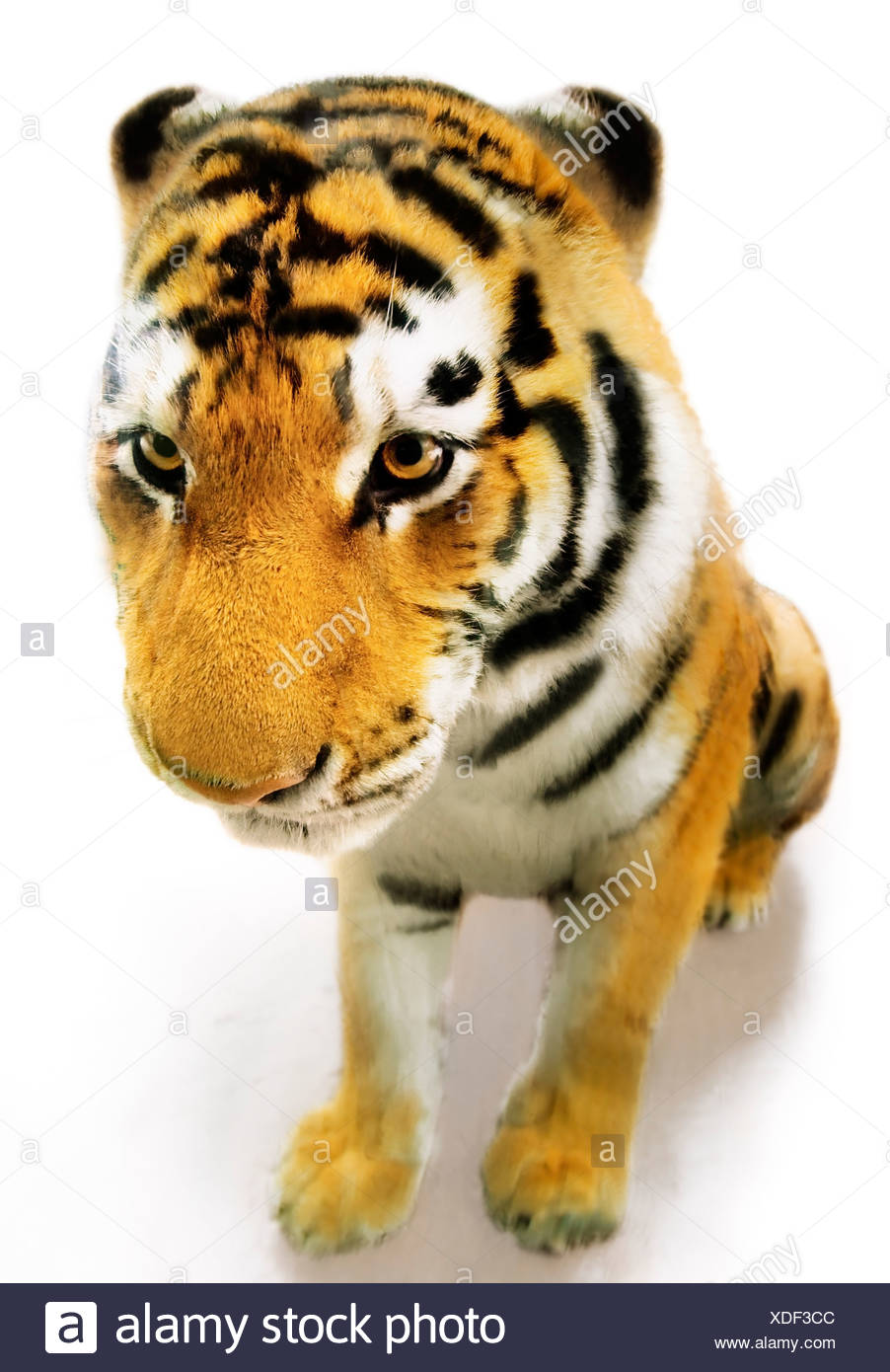 Realistic Looking Toy Tiger - Stock Image