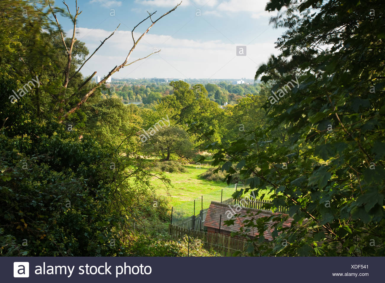 View across the Thames Valley from Poets Corner in Richmond Park, Surrey, Uk - Stock Image