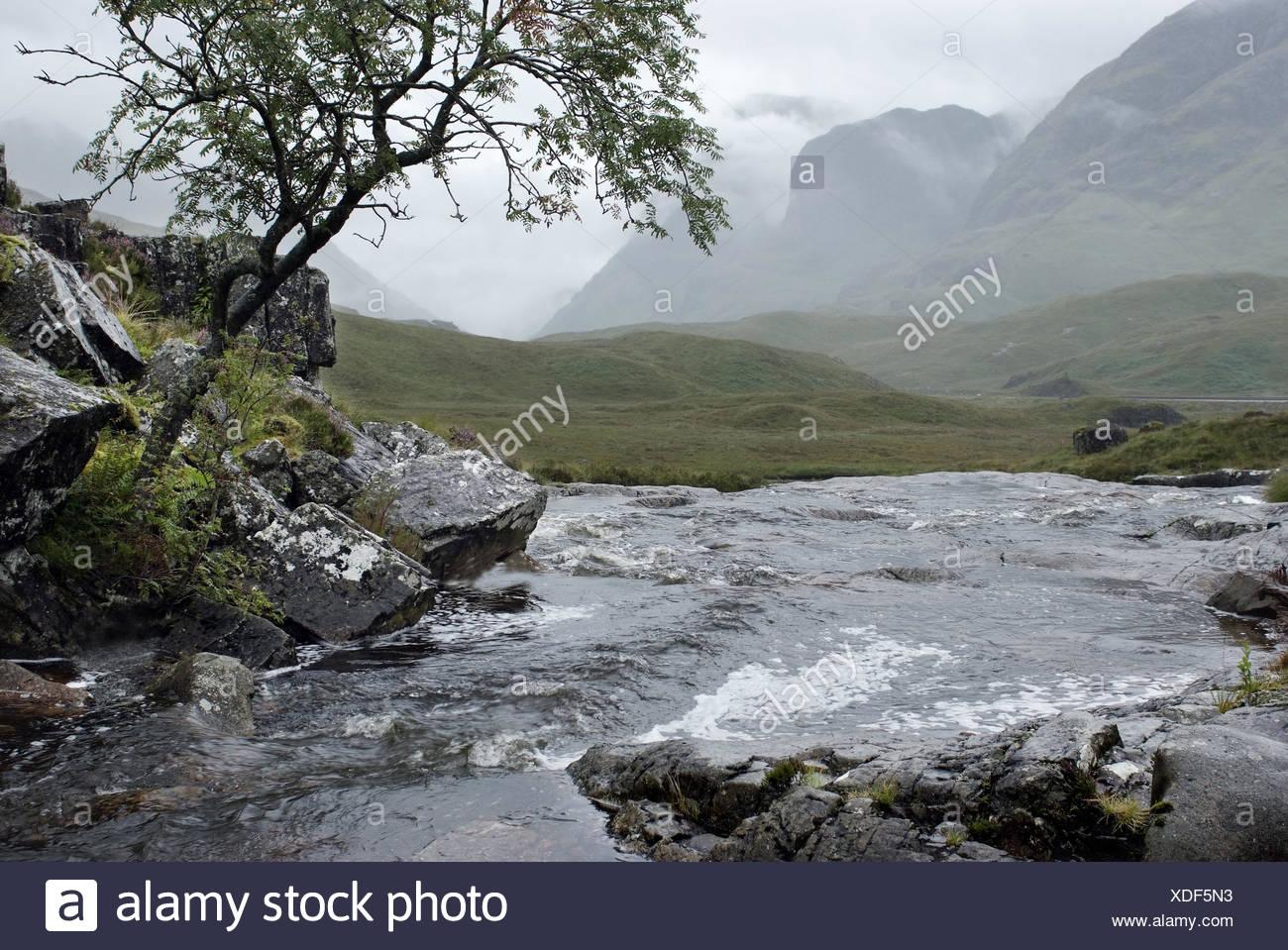 Great Britain, Scotland, Highlands, Grampian Mountains, Glen Coe Valley, rain, - Stock Image