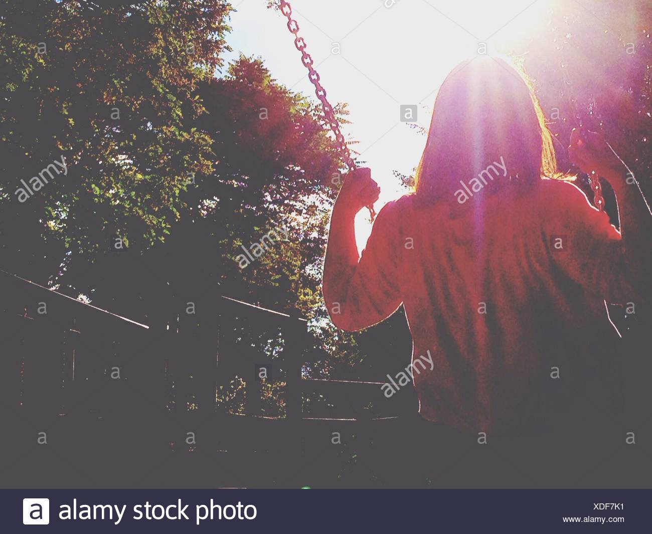 Rear View Of Girl Swinging On Sunny Day - Stock Image
