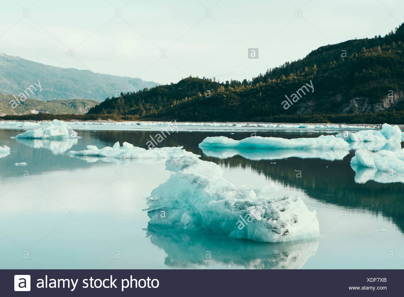Icebergs floating off the shore at the end of the McBride Glacier, off Alaska. - Stock Image