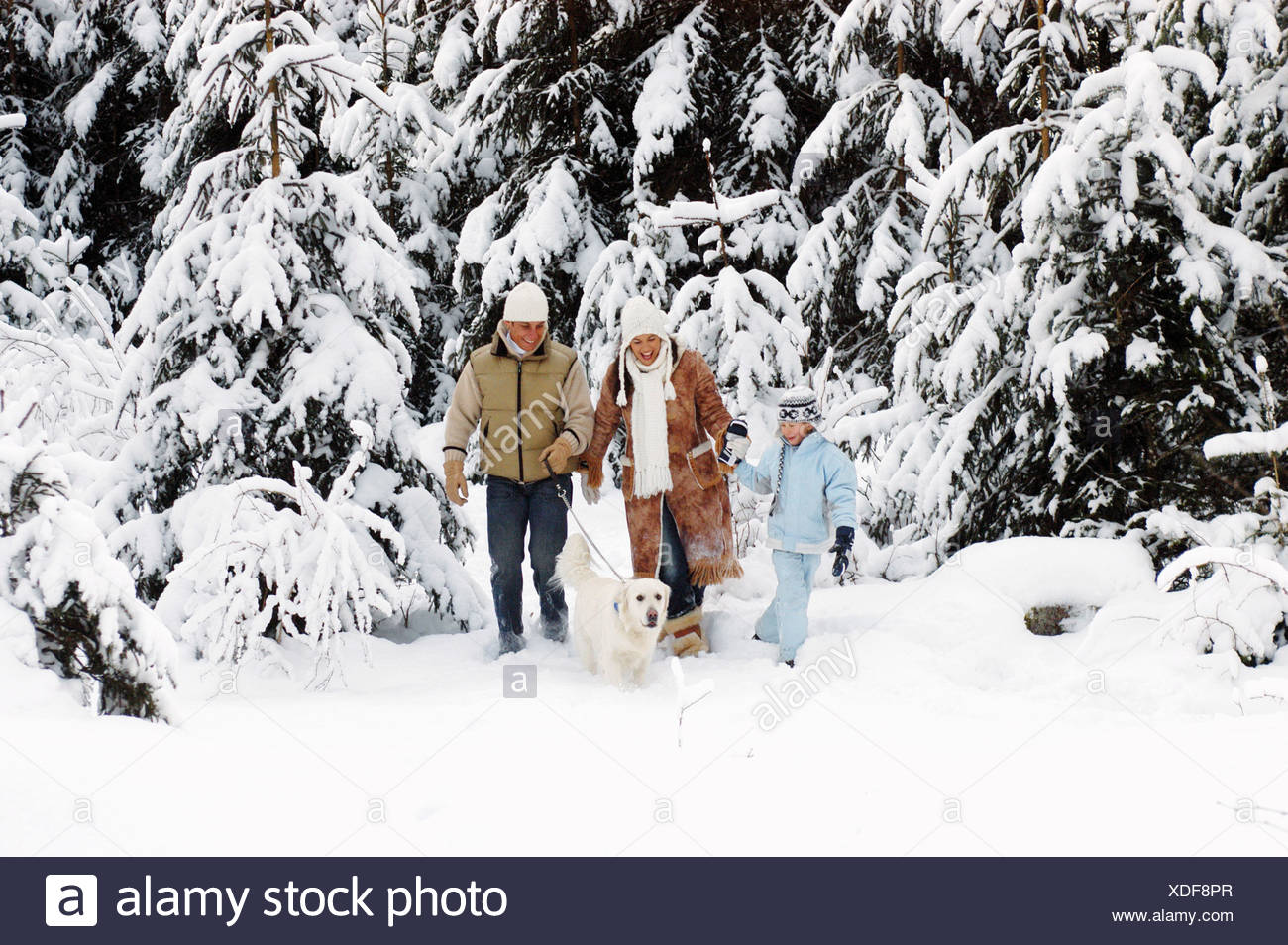 Austria, Salzburger Land, parents and son (6-7) walking in snow with dog - Stock Image