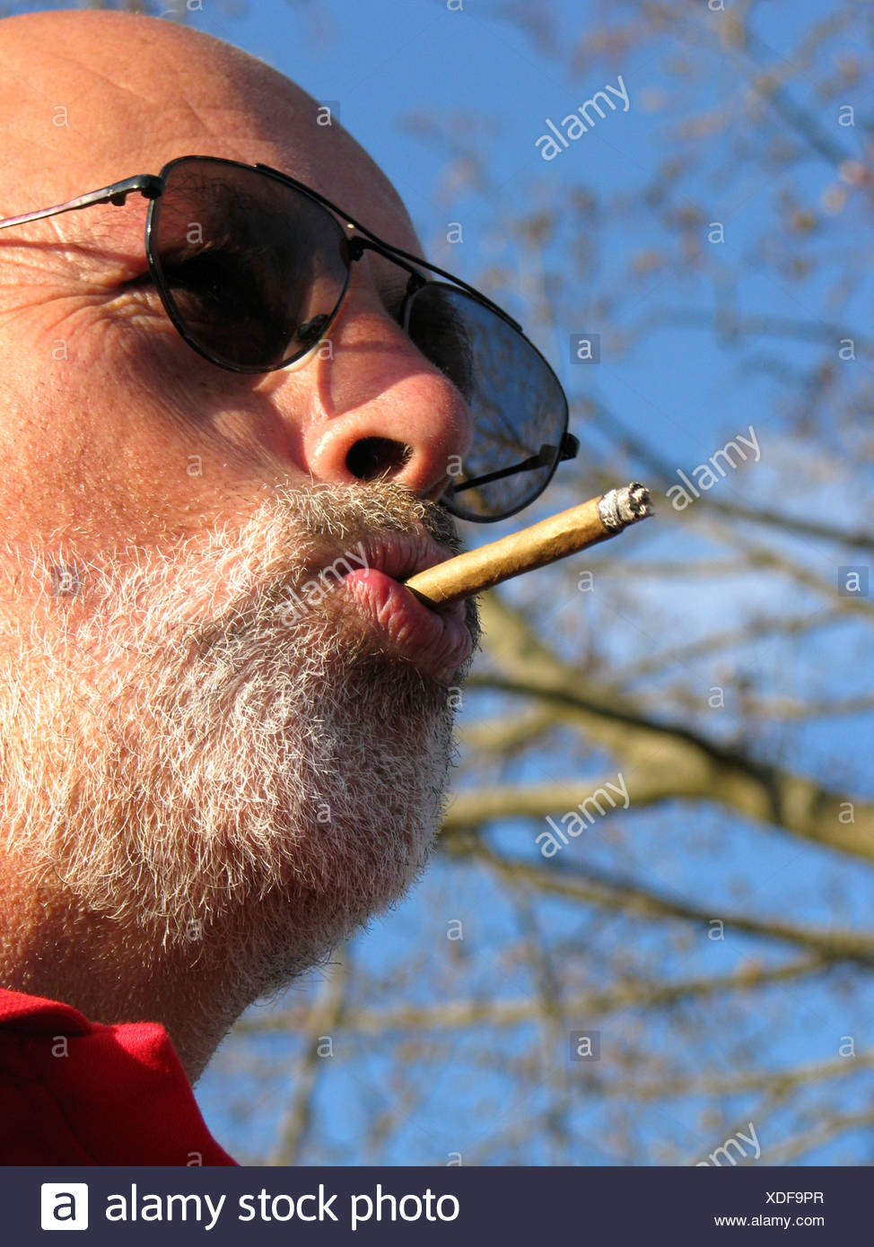bearded man with sunglasses smokes cigarillo, Germany - Stock Image