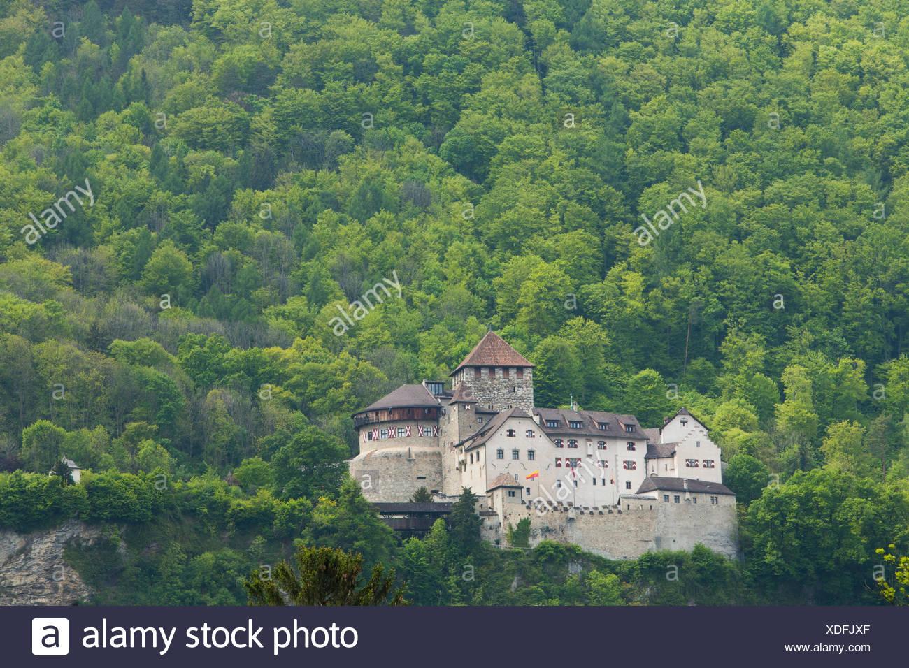 Castle, Vaduz, FL, principality, Lichtenstein, Switzerland, Europe, - Stock Image