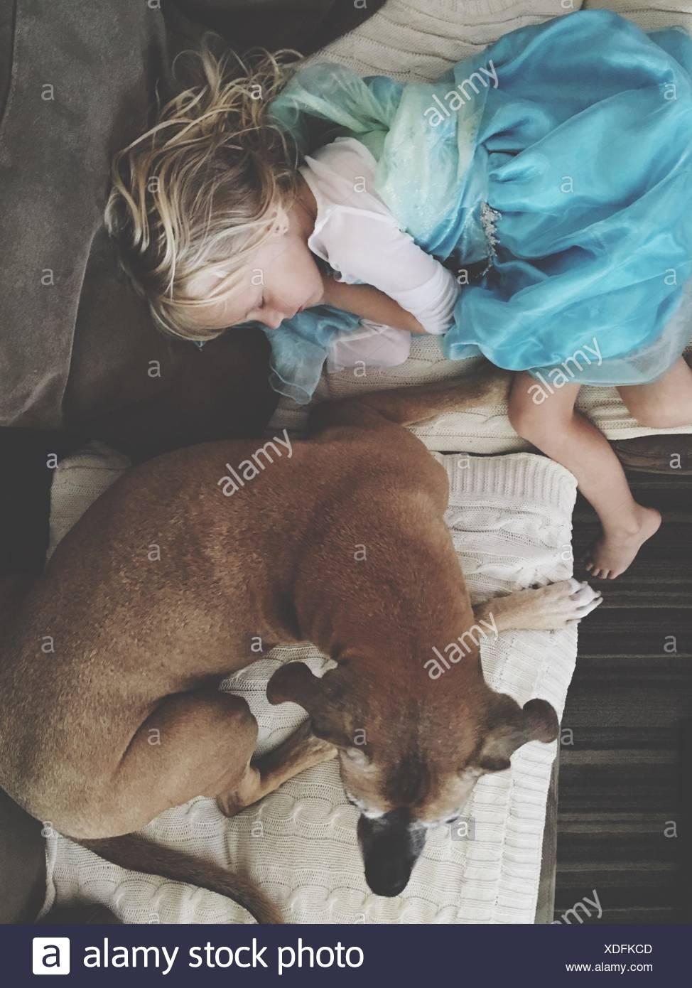 High Angle View Of Girl Sleeping On Sofa By Dog At Home - Stock Image