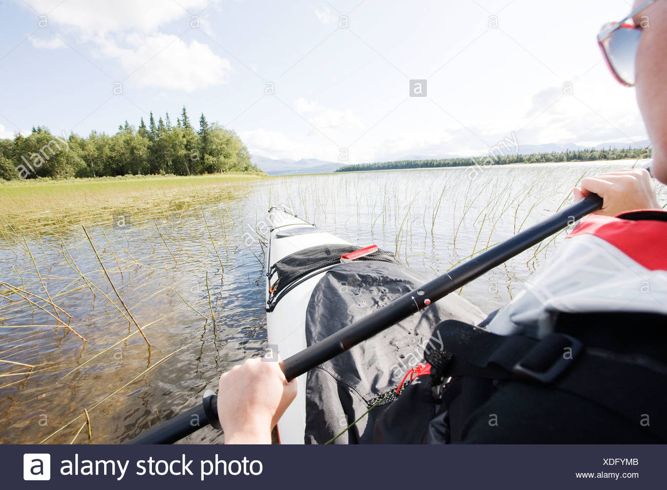 Cropped woman kayaking in the peaceful lake - Stock Image