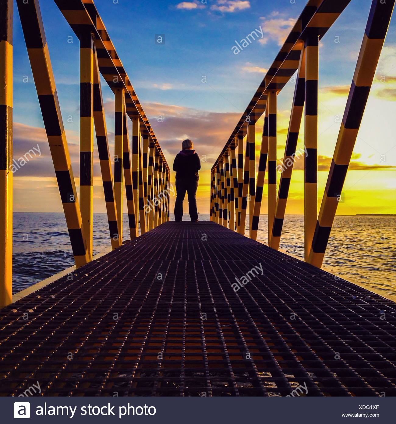 Rear View Of Woman Standing At The Edge Of Pier On Lake - Stock Image