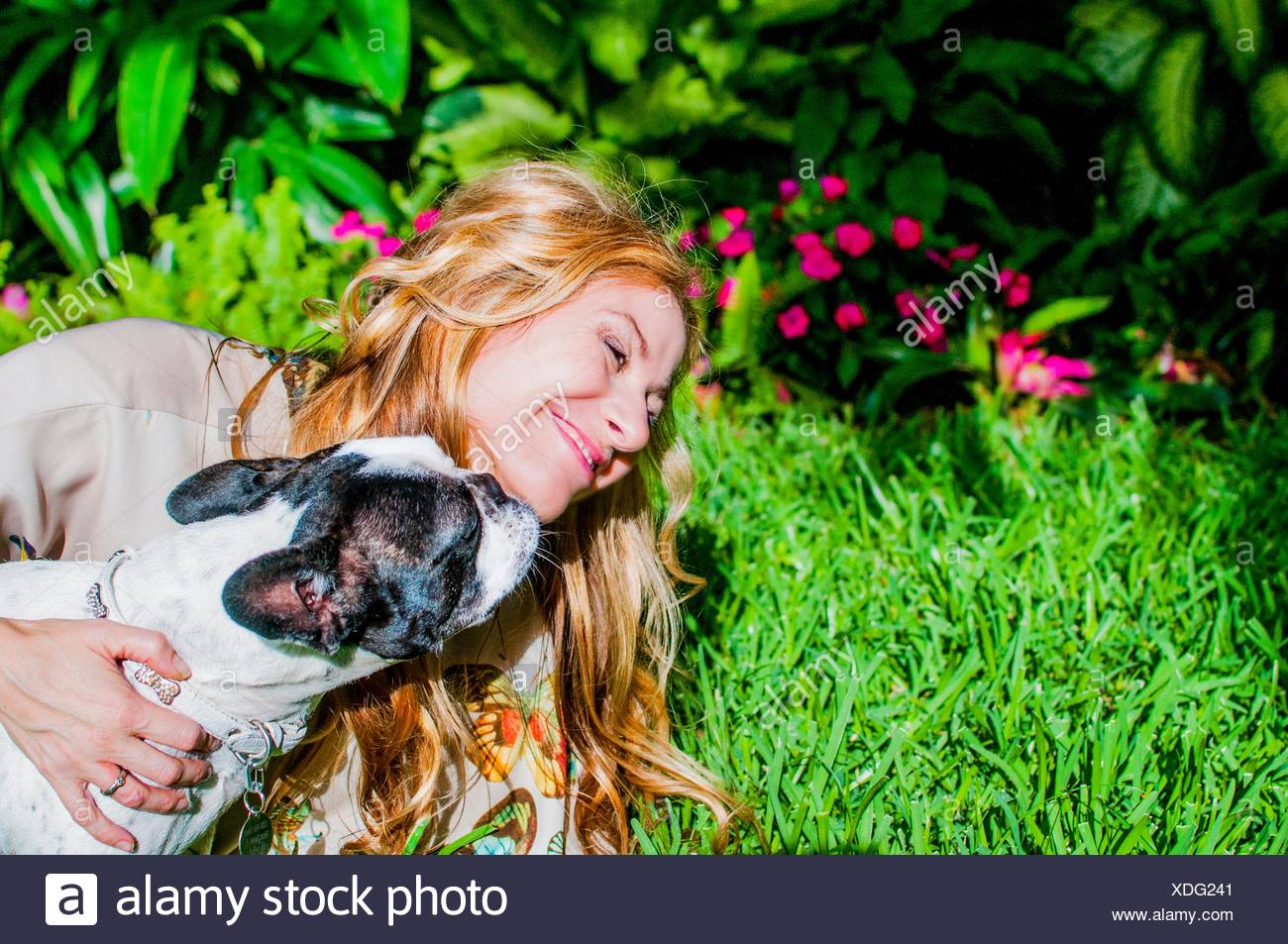 Dog licking woman's face in garden - Stock Image