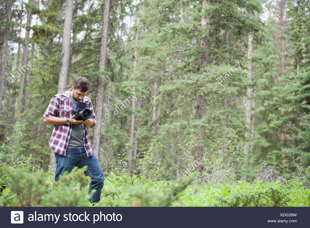 Male photographer using an SLR camera outdoors - Stock Image