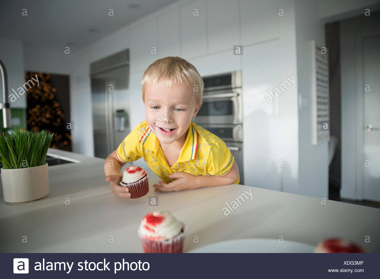 Eager boy reaching for cupcake on kitchen island - Stock Image