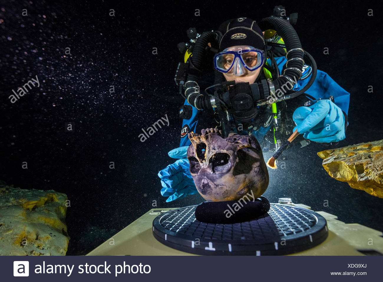 A diver brushes debris from the skull of 'Naia,' a teenage girl who died 12,000-13,000 years ago, onto a stand in Hoyo Negro. - Stock Image