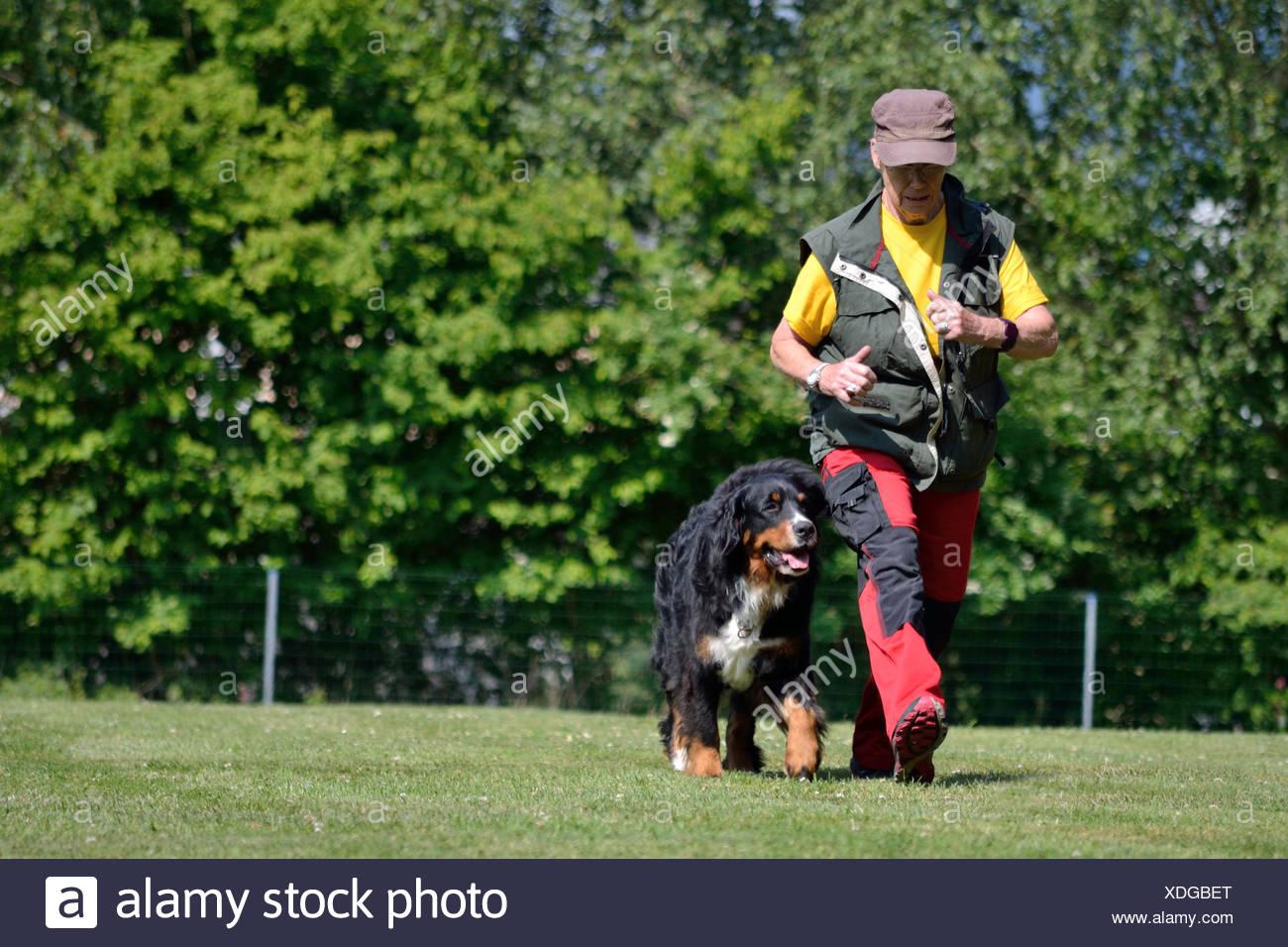 Dog owner at the dog training Stock Photo