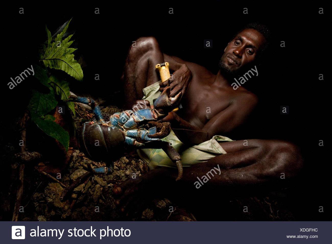 A local man holds a coconut hermit crab, subject to a monitoring program on Tetapare. - Stock Image