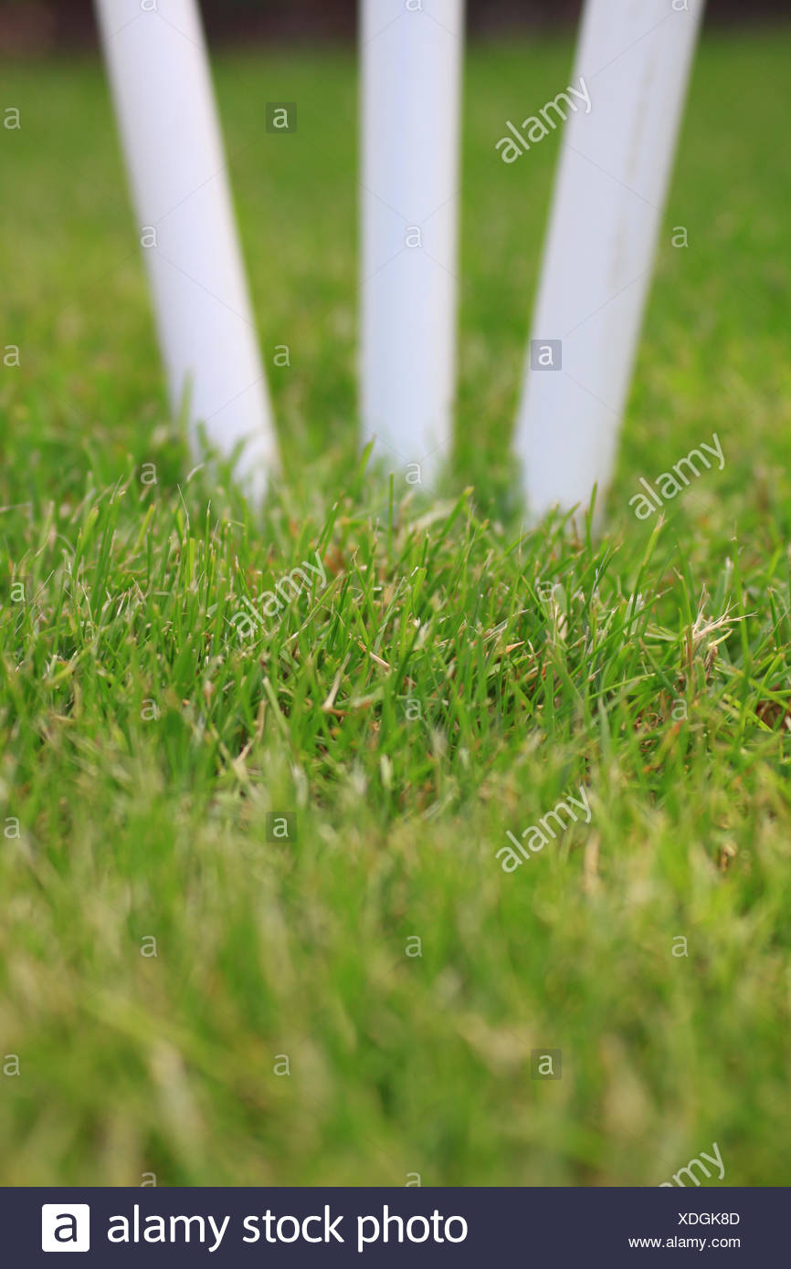 Cricket Stumps - Stock Image