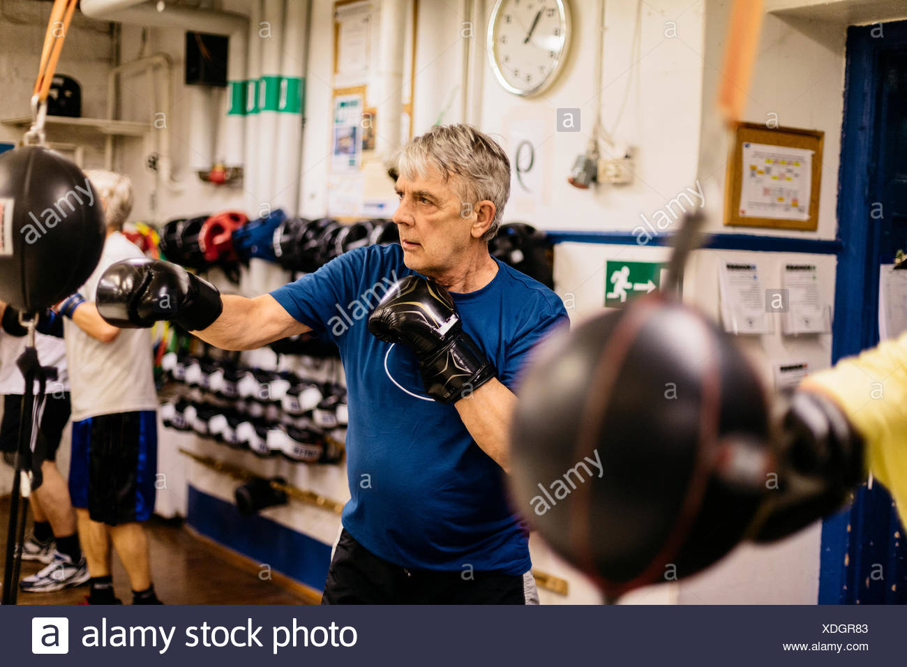 1c696770a4d Senior man training with a punching bag Stock Photo  283725907 - Alamy