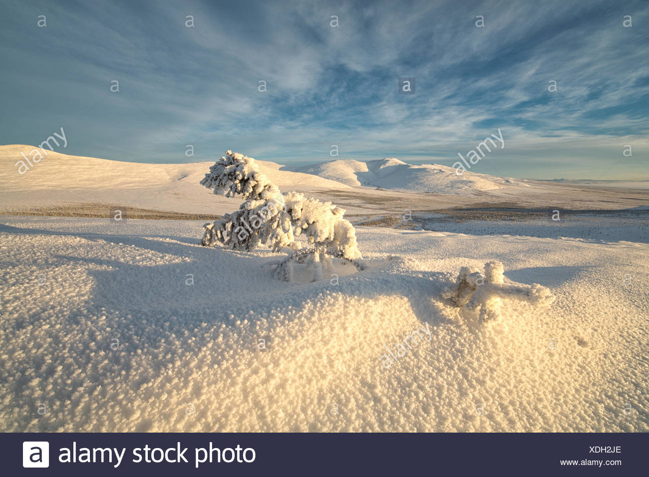 Late afternoon sun shines on the snow covered tundra on the mountaiins around Old Crow, Yukon. - Stock Image