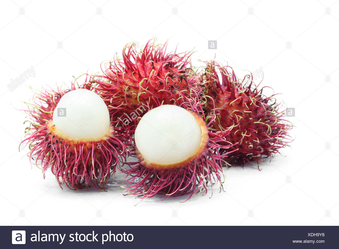 tropical Rambutan fruit Stock Photo