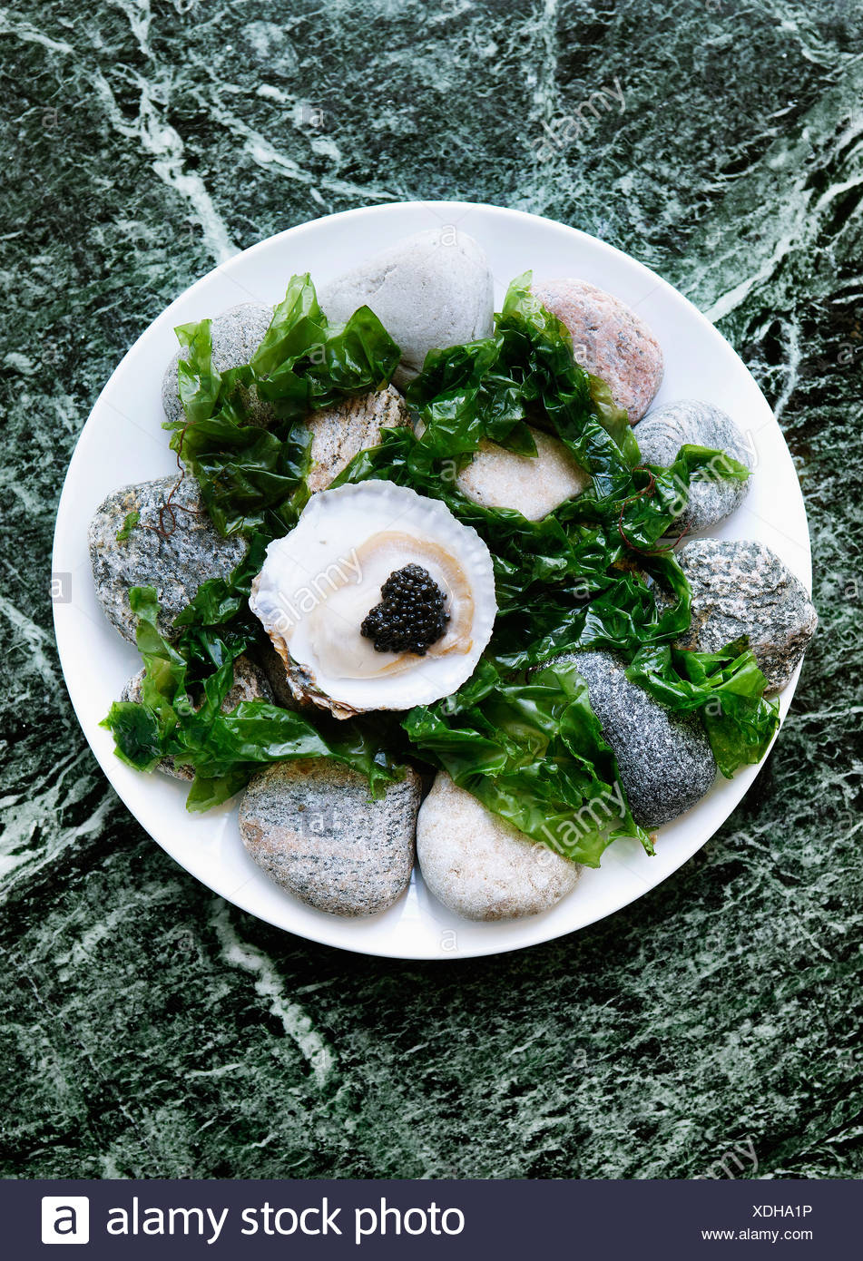 Plate of oysters with caviar and seaweed - Stock Image