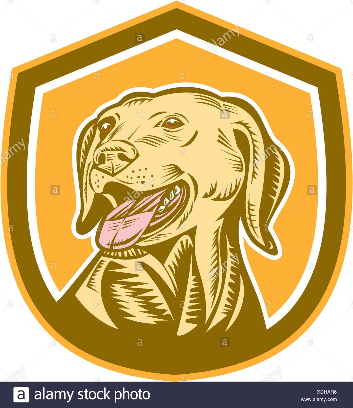 Labrador Dog Head Shield Woodcut - Stock Image