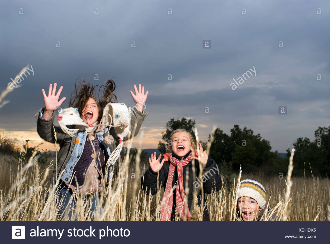 Group of kids jumping in long grass Stock Photo