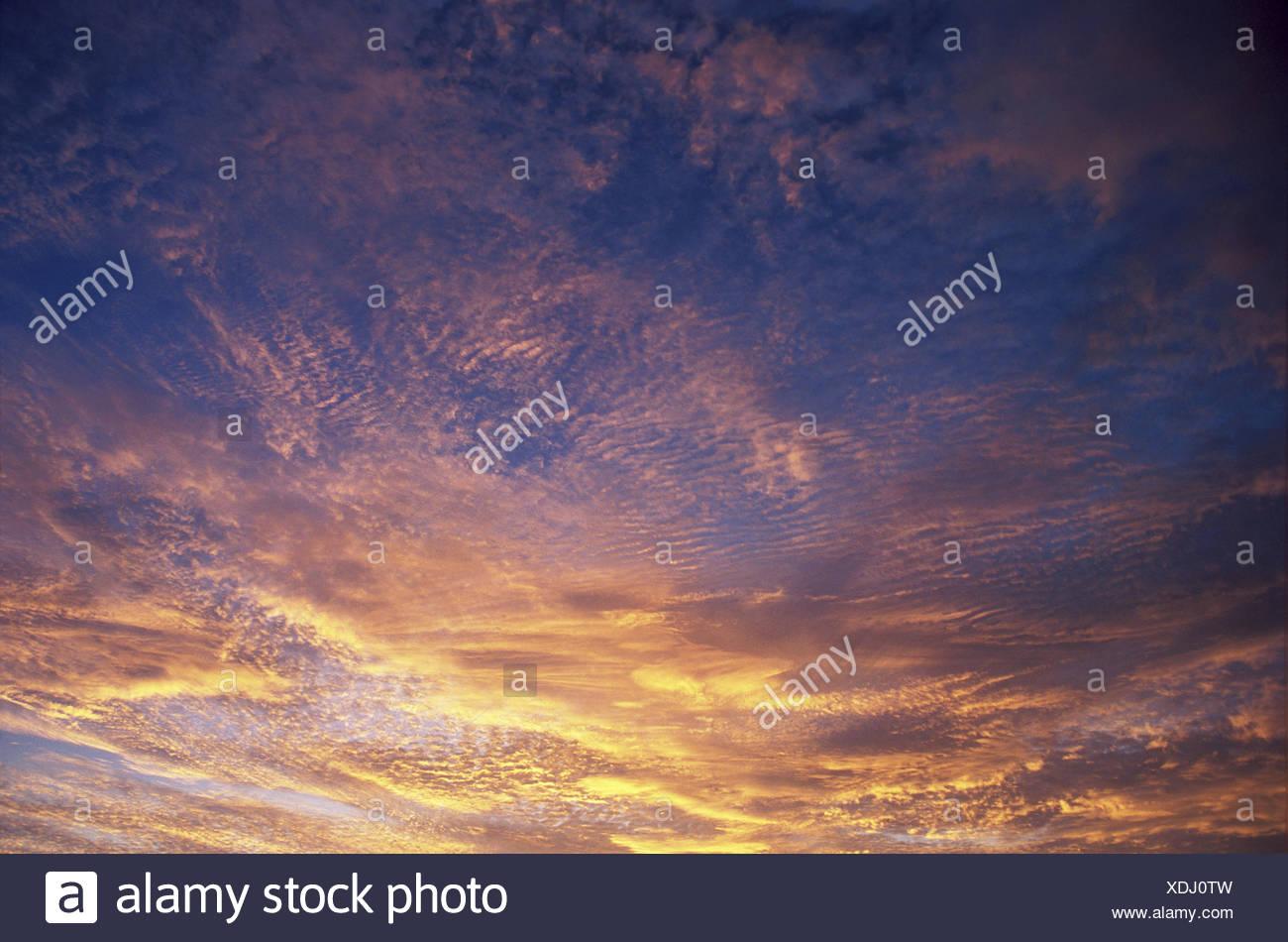 Wispy yellow orange clouds on blue sky. - Stock Image