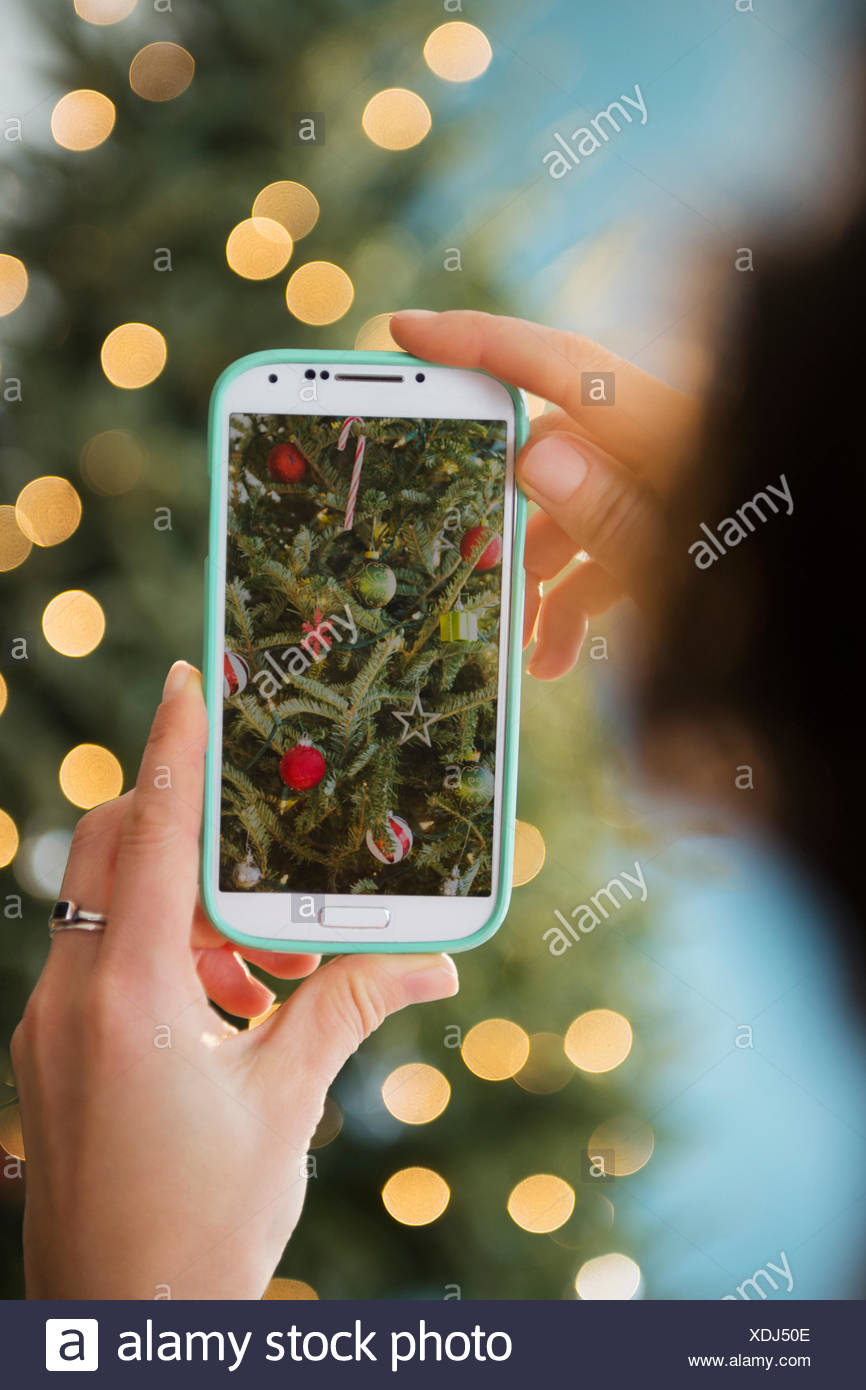 Personal perspective of person photographing Christmas tree - Stock Image