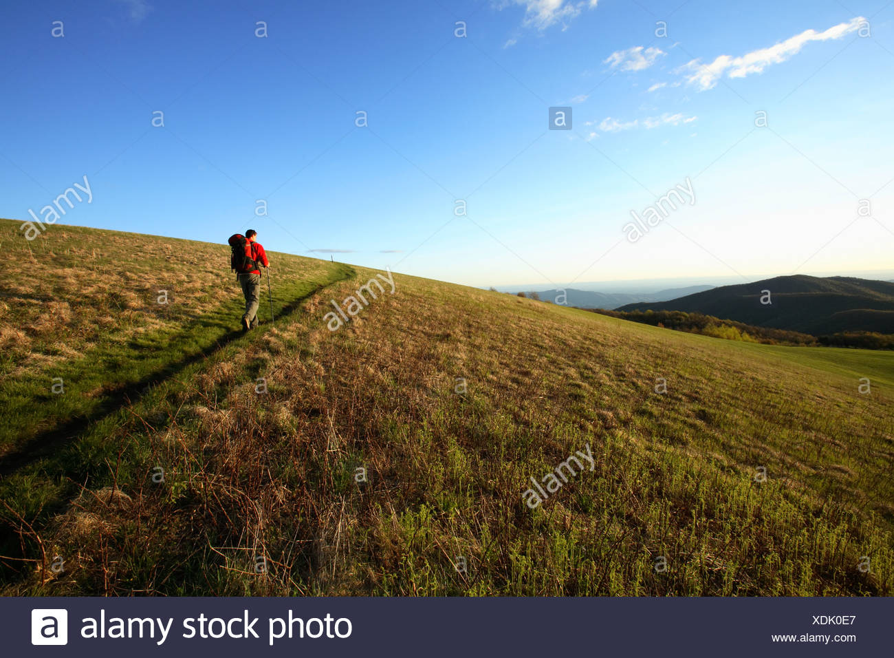 Male backpacker climbs the final stretch of the Appalachian Trail to the summit of Max Patch Bald west of Asheville, NC - Stock Image