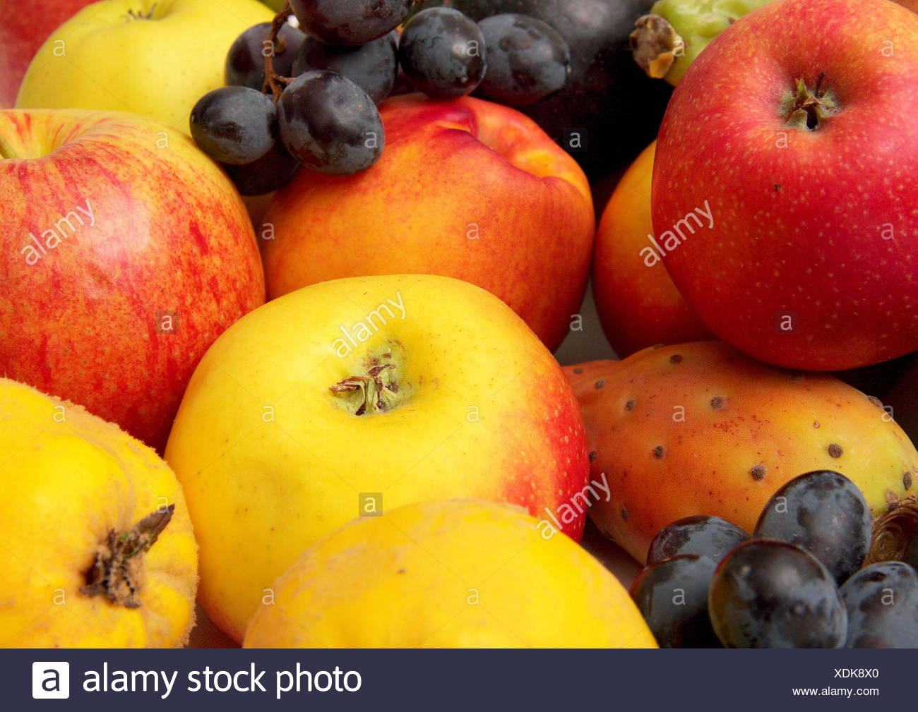Obst 1 - Stock Image